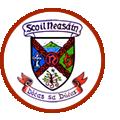 Scoil Neasáin